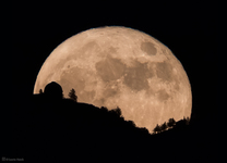 7445_Lick Observatory Supermoon Rising